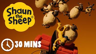 Shaun the Sheep - Season 3 - Episodes 1-5 [30 MINS]