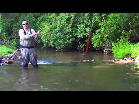 Fly Fishing At Suches, GA.