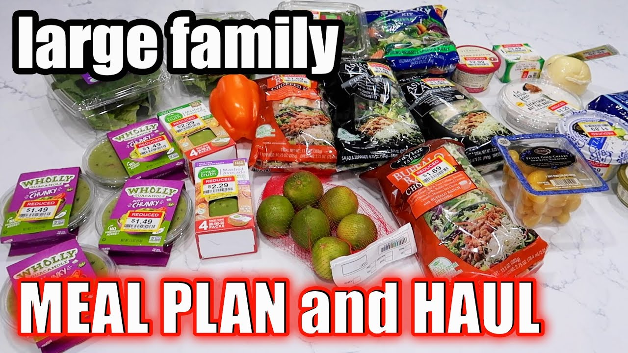 LARGE FAMILY MEAL PLAN AND GROCERY HAUL   Cleaning out the FREEZER!