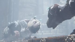 The Last Guardian Trico vs. Second Guardian