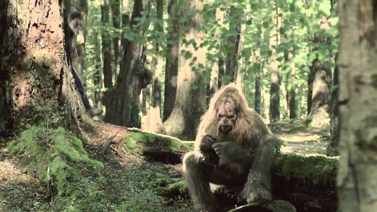 a report on the existence of the big foot yeti and sasquatch Is the sasquatch, yeti, big foot and,  report abuse comment add a comment  explorers and writers consider current evidence of the yeti's existence.