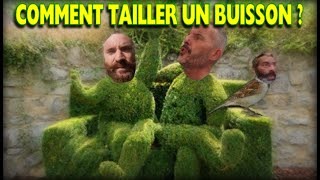 COMMENT TAILLER UN BUISSON ? (Perversion narcissique)