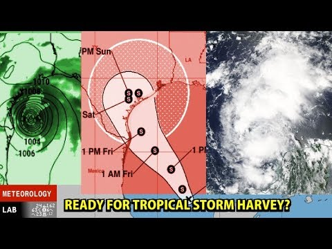 NIGHTLY WEATHER - Wed 8/23/2017 - Tropical Storm Harvey / The week's weather