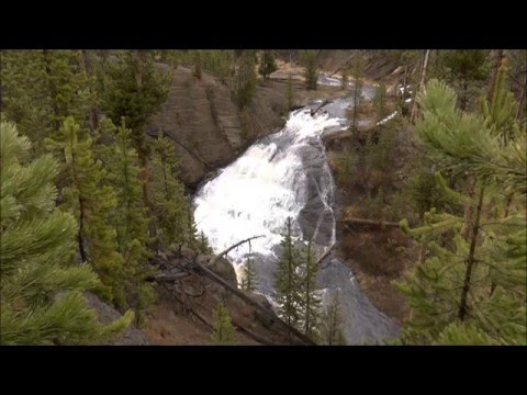 Little Gibbon Falls, Yellowstone National Park, WY by colong7034
