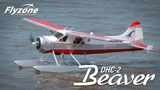 Load Video 1:  Spotlight: Island Wings Beaver Rx-R by Flyzone