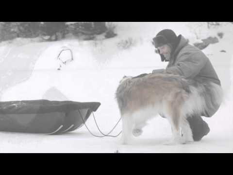 Ice Fishing with Pelican Utility Sleds