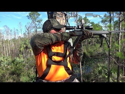 Rifle Season At J. W. Corbett WMA November 2017