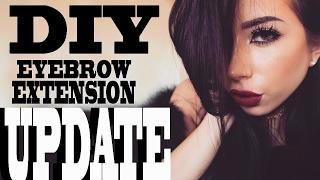 DIY EYEBROW EXTENSIONS UPDATE!!!