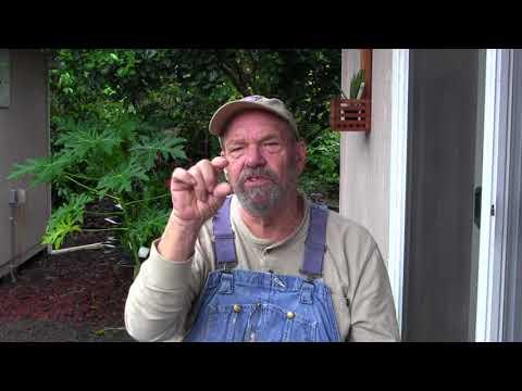 Grumpy Gardener Medicine Show 9