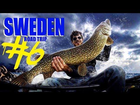 Sweden road trip 6 brochet record 1m comment p cher dans un lac inconnu youtube - Comment pecher dans un port ...
