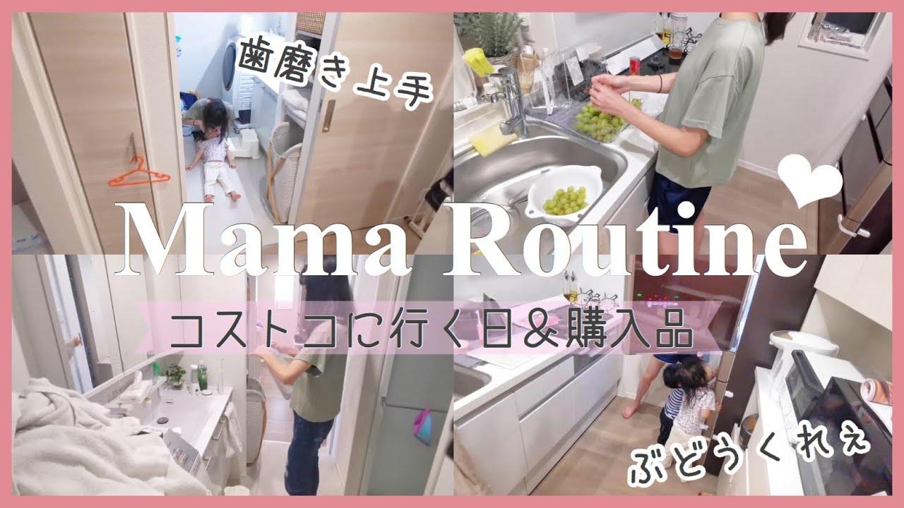 【主婦ママルーティン】コストコ行く日🛍 |  購入品 | 家事掃除