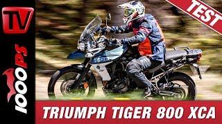 Reiseenduro Vergleichstest 2019 | Triumph Tiger 800 im Vergleich - Test und Empfehlungen
