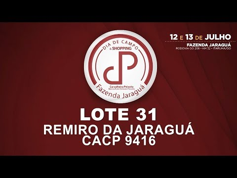 LOTE 31 (CACP 9416)