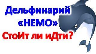 """Дельфинарий """"Немо"""" в Одессе. Интересно ли идти в дельфинарий. Достопримечательности Одессы"""