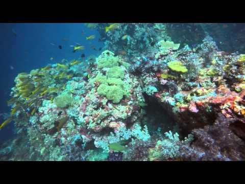 Scuba Jeff event Diving Koh Lanta March 2015
