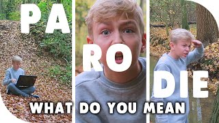 PARODIE TIESGAMES: What Do You Mean (Justin Bieber) ''GEEF ME EEN LIKE!''