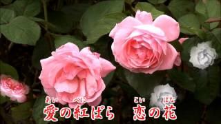 1951年発売 作詞:藤浦 洸 作曲:上原げんと 歌手:美空ひばり(当時14...