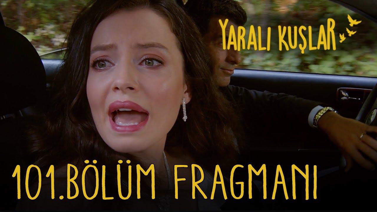 Yaralı Kuşlar 101. Bölüm Fragmanı (English and Spanish)