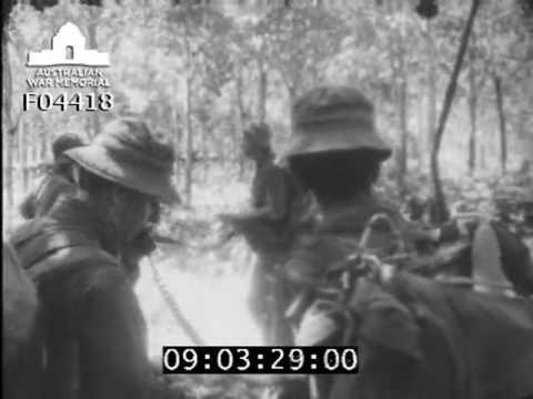 Signaller on operations DPR/TV/1231