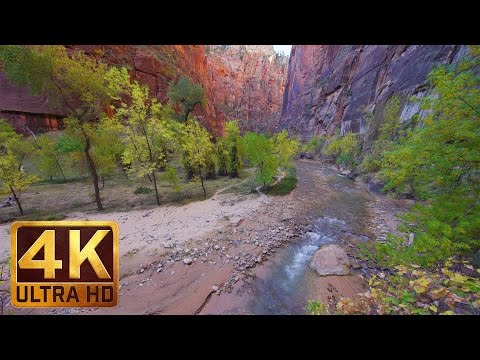4K Relaxation Video from Zion National Park - Riverside Walk Trail - 2 Hours