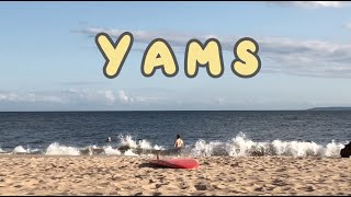Play Yams
