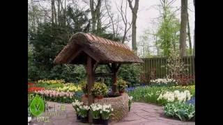 Парад цветов в Голландии(http://ukrsad.com.ua/ Палитра ярких красок на выставке цветов в Голландии., 2011-05-14T15:25:24.000Z)