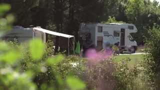 Aarhus Camping - tæt på storbyen, ude i naturen