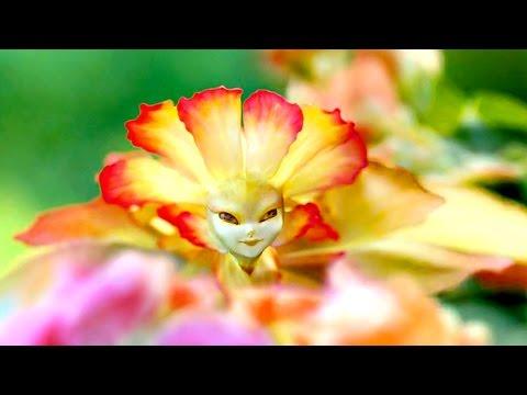 Hadas Reales   En Busca de la Magia #1   Documental Inédito   Naturnia
