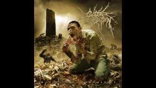 Cattle Decapitation - Lifestalker (Subtitulado al español)