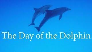 「イルカの日」のテーマ / ジョルジュ・ドルリュー作曲(1974年公開米映画)