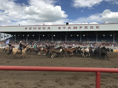 ATB Financial highlights from the Ponoka Stampede 2018