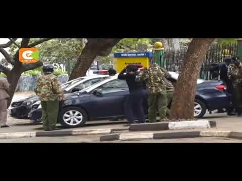 Bees attack protesters at Nairobi CBD