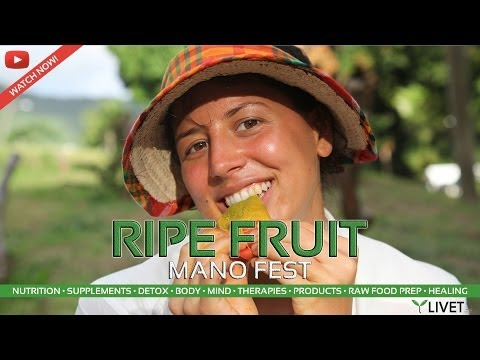 ANTIGUA MANGO FESTIVAL & RIPE LOCAL FRESH MANGO TASTING REVI