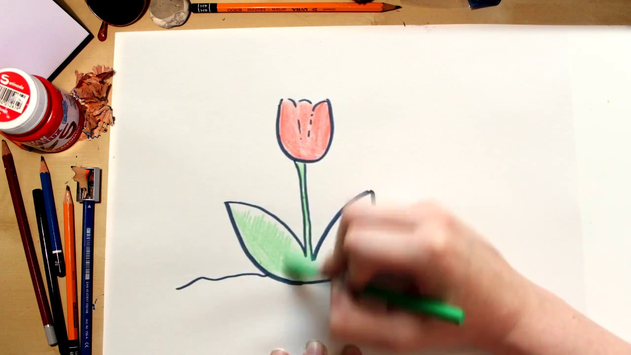 How To Draw A Tulip Drawing Flowers With Kids Youtube