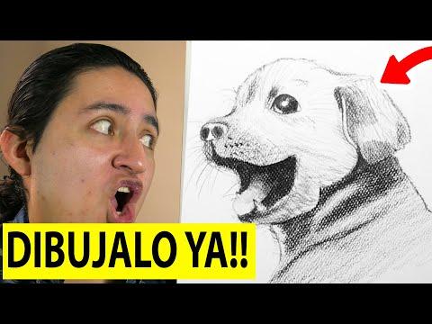 🔥-como-dibujar-un-perro-facil-paso-a-paso-realista-y-rápido-▶-☑️-curso-de-dibujo