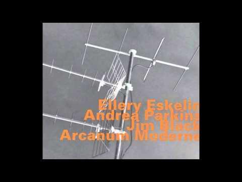 """It's a Samba"" - Ellery Eskelin / Jim Black / Andrea Parkins"