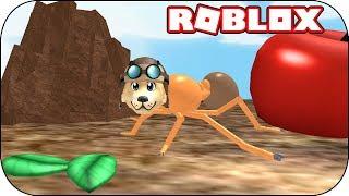 ROBLOX-eu sou uma formiga trabalhadora-Ant Simulator