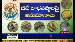 Special Story on Biodiversity - TV5
