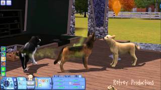 Breed DogsCats on Sims 3