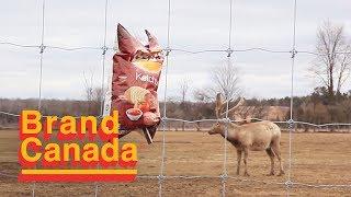 O Canada (Karaoke Video)   Brand Canada, Episode 10