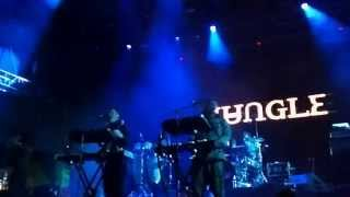 JUNGLE - Lucky I Got What I Want (Live Bogotá)