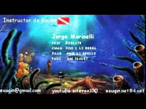 instructor de buceo pdic cmas faas ---diving instructor pdic cmas faas