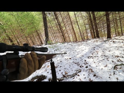 How I Hunt Deer WITHOUT A License In North Carolina