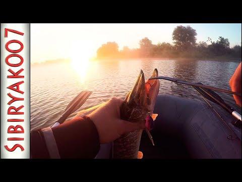 Ах эти злые поклёвки!... Ловля щуки на вертушки Mepps. Утренний клёв. Рыбалка на спиннинг летом.