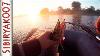 Злые утренние поклёвки!... Ловля щуки на вертушки Mepps. Рыбалка на спиннинг летом.