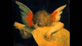Lucian viziru- Predestinati