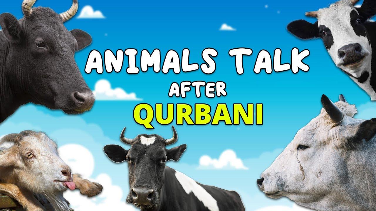 Download Animals talk after QURBANI -  Sketch Video - Sajid Ali