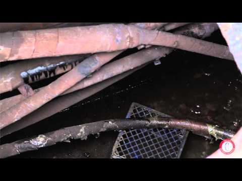 Scrappers cost Detroit more than money 3/14/2014