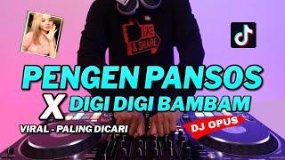 DJ PENGEN PANSOS x DIGI DIGI BAM BAM (BAPER) ♫ LAGU TIK TOK TERBARU REMIX ORIGINAL 2021