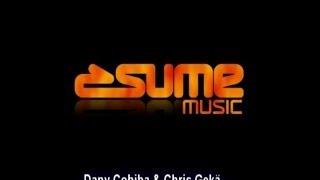 Dany Cohiba & Chris Gekä - Amazia (Nervous Kid Remix)